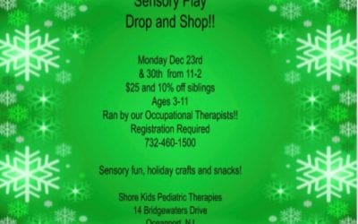 Sensory Play Drop and Shop