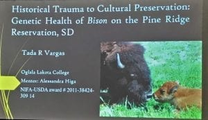 Research presentation by Tada Vargas-Previous Building Sustainability Pathways student fellow at Oglala Lakota College