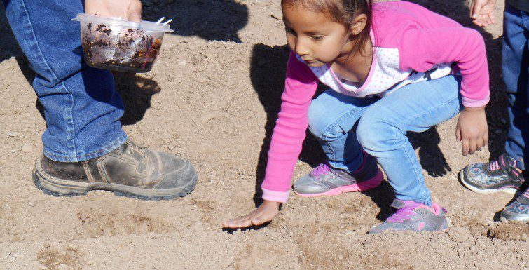 """Wakanyeja Sacred Little Ones &  K'é Family Engagement Initiative Presents:  """"SIPI YDI Community Planting Event"""""""