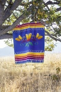 The Courage to Bloom blanket by Deshawna Anderson.
