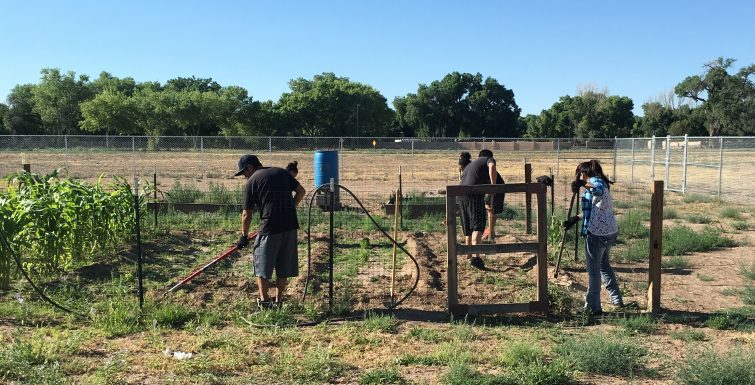 Gardening at the Southwestern Indian Polytechnic Institute