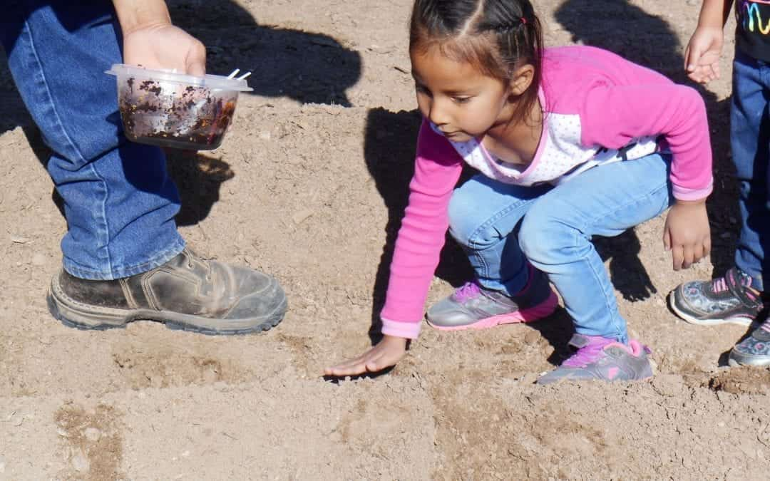 Grotto Foundation Grants $25,000 to Revitalize Lakota Language in Early Childhood