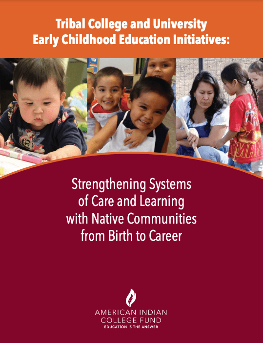 Indigenous Early Childhood Education