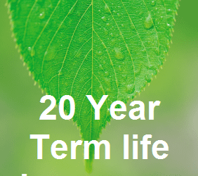 What is 20 Year Term Life Insurance?